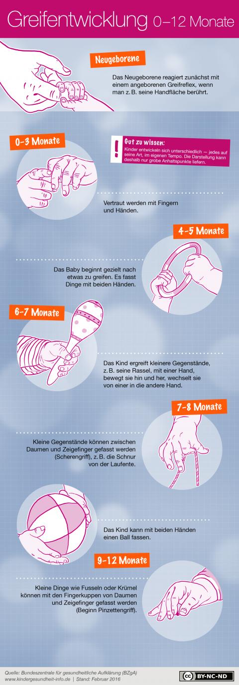 Infografik_Greifentwicklung_BZgA-kindergesundheit-info